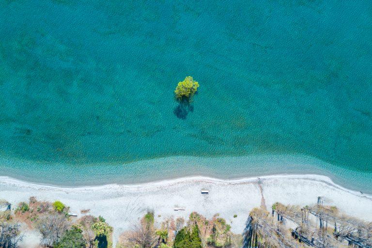 Aerial view of Wanaka tree, famous lone tree of South island, New Zealand
